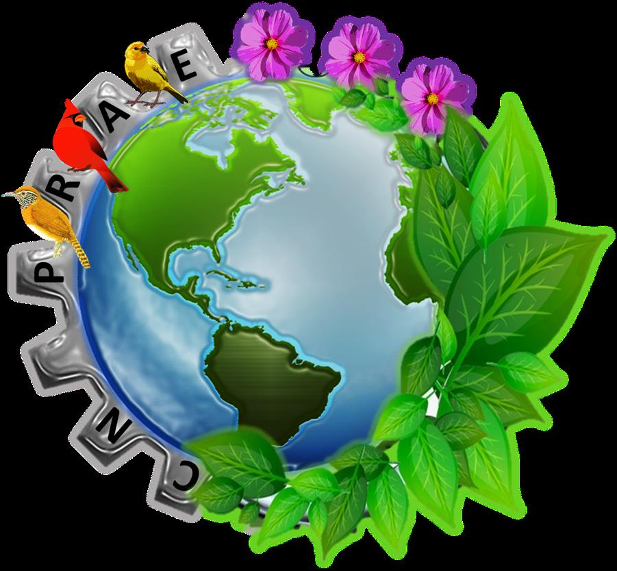 PRAE - Proyecto Ambiental Escolar.